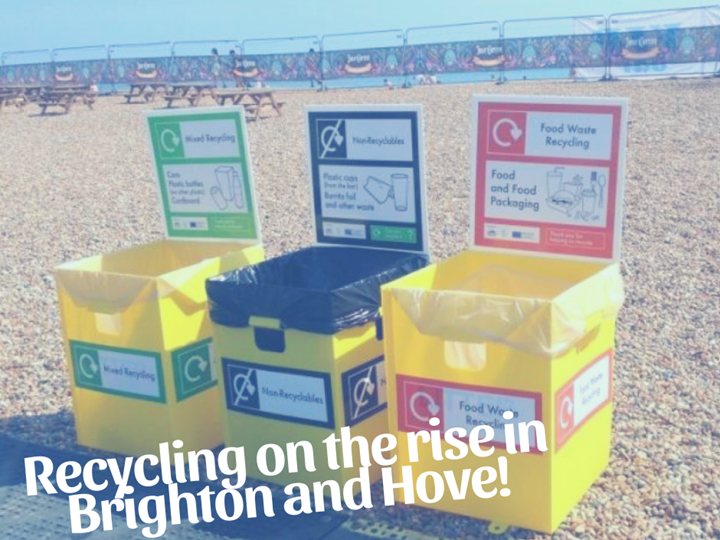 Recycling on the rise in Brighton and Hove!